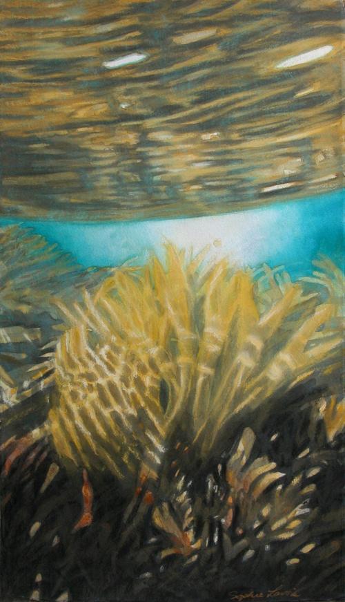 SEAWEED LIGHT by Sophie Lavoie