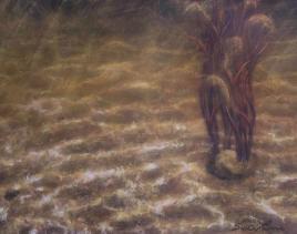 LA MER AMBREE by Sophie Lavoie