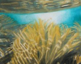 SEAWEED LIGHT by Sophie Lavoie